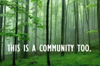 Create a community forest to build natural capital