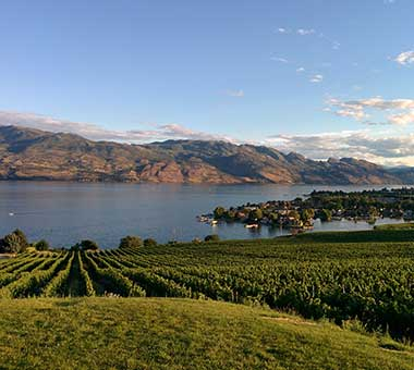 Discover the Okanagan Area