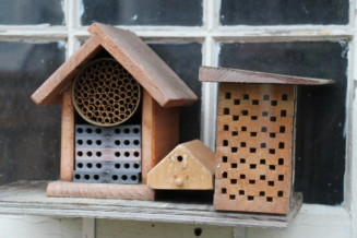 Build a bee house in Alta Vista
