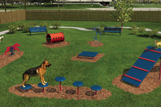 Build a public Dog Agility park or add some Agility equipment to an existing dog park