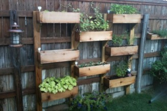 Create a shared herb garden along a fence in a public area