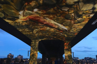 Projected images of spawning salmon under the Cambie Bridge, Vancouver