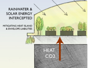 Use rooftops to grow food by retrofitting existing buildings and including in new developments
