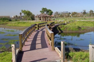Create a marshland park with walking trails and enhanced habitat for aquatic species
