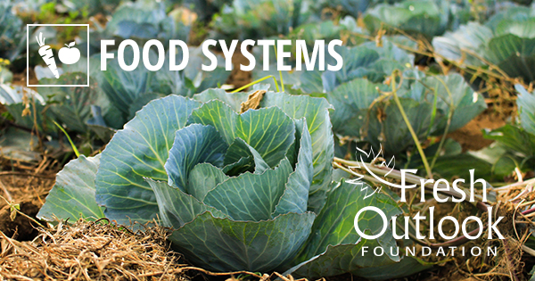 food_systems_issues_share_image