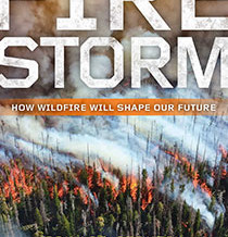 Understand that wildfire pollutes river and water systems for decades.