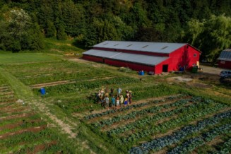 Farm-share one weekend a month to collectively grow food & create community on land near cities