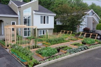 Empower families by teaching them how to utilize the space they have to grow food sustainably.