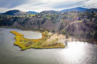 Save Sickle Point, one of the last remaining wetland areas along Skaha Lake.