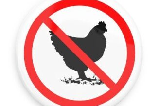 No to chickens